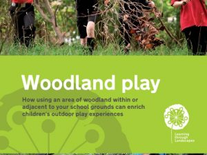 woodland-play-in-school-grounds