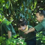 The global movement that's improving child health and wellbeing, nature connection and engagement in learning