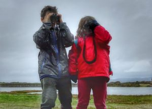outdoor lesson idea bird survey RSPB big birdwatch