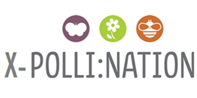 X-Polli:Nation logo